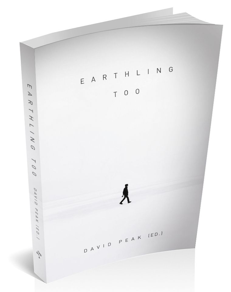 3d cover image for earthling too by David peak