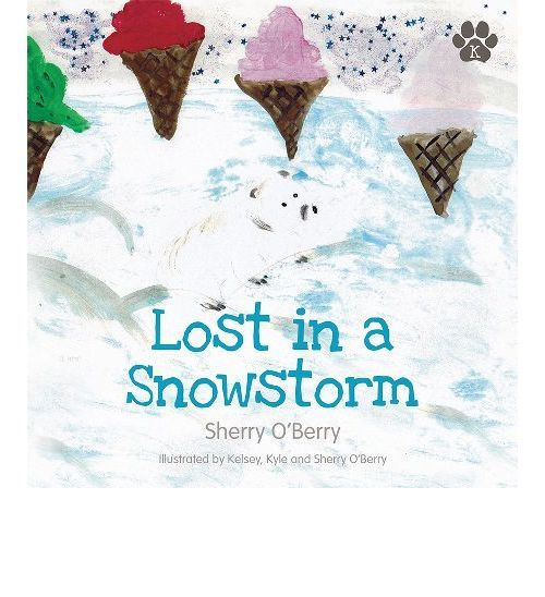 Lost in a Snowstorm